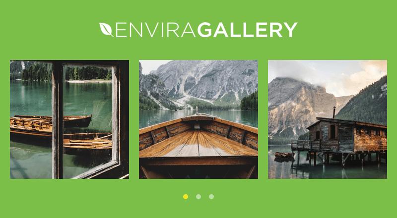دانلود افزونه گالری تصاویر وردپرس Envira Gallery
